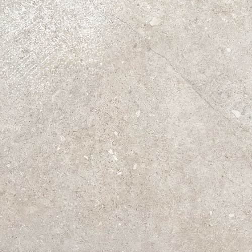 Daltile Valor 12 X 24 Light Polished Paramount White