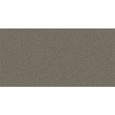 Eleganza Tiles Modern 8 x 16 Wall Polished Cemento