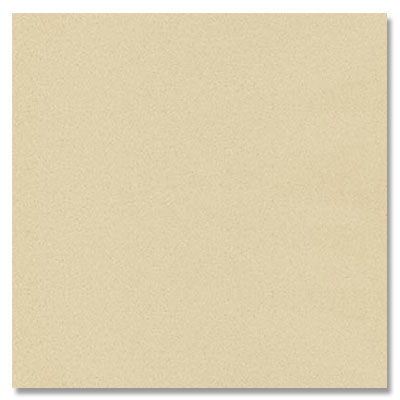 Eleganza Tiles Vision Polished 12 X 24 Ivory