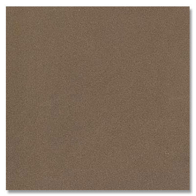 Eleganza Tiles Vision Polished 12 X 24 Taupe