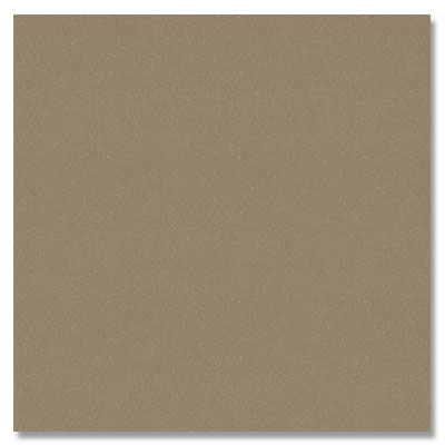 Eleganza Tiles Vision Polished 12 x 12 Fossil