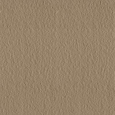 Eleganza Tiles Vision Rustic 12 x 12 Fossil