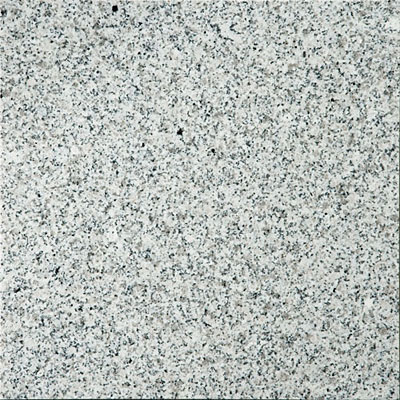Emser Tile Granite 12 x 12 Bianco Catalina GR01