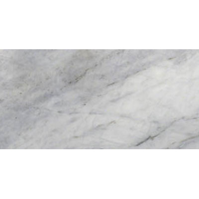 MS International Marble 12 x 24 Polished Arabescato Venato Polished