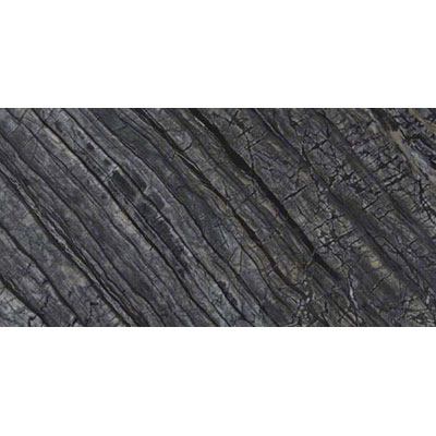 MS International Marble 12 x 24 Polished Black Oak