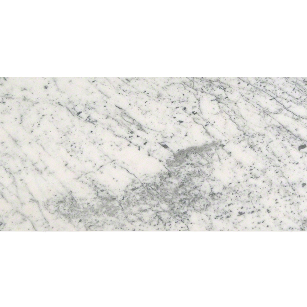 MS International Marble 12 x 24 Polished Carrara White Polished