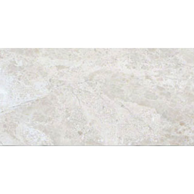 MS International Marble 12 x 24 Polished New Diane Reale Polished