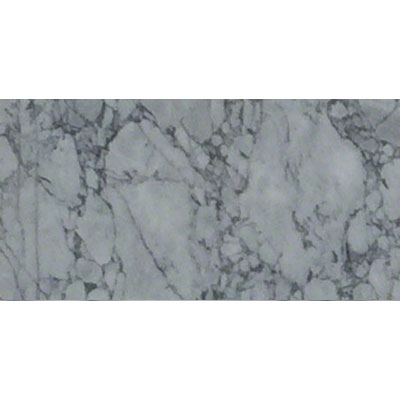 MS International Marble 12 x 24 Polished Statuary Capri