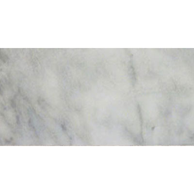 MS International Marble 12 x 24 Polished Turkish Carrara White Polished