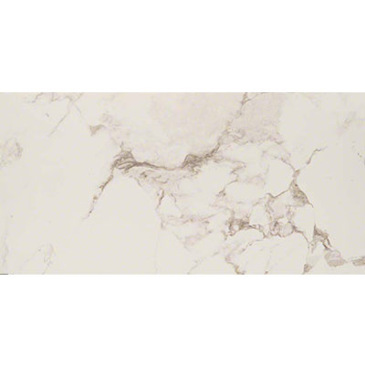 MS International Pietra 16 x 32 Polished Statuario