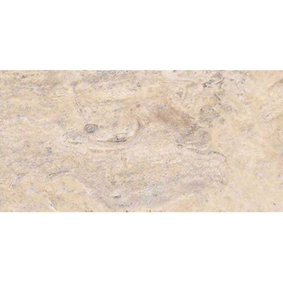MS International Travertine 12 x 24 Honed Filled Silver Travertine Vein Cut