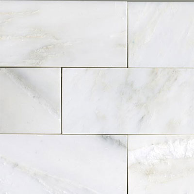 Maestro Mosaics Marble 3 x 6 Polished White Statuary