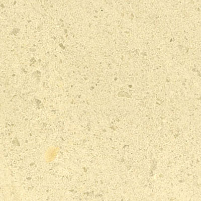Maestro Mosaics Marble 12 x 12 Honed Antique Beige
