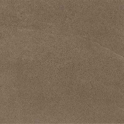 Marazzi Tosal 20 x 20 (Discontinued) Brown DN40
