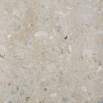 SeaStone ShellStone 24 x 24 (1.5 thick) ShellStone Buff F242415-Shellstone-Buff