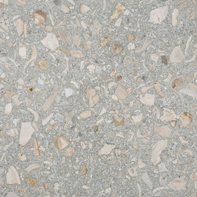 SeaStone ShellStone 12 x 12 (1.5 thick) ShellStone Grey F121215_Shellstone-Grey