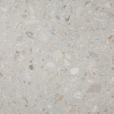 SeaStone ShellStone 12 x 12 (1.5 thick) ShellStone White F121215-Shellstone-White