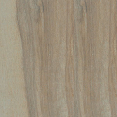Tesoro Alpine 8 x 24 Wide Wood Look Plank Beech - Natural STALBEE824