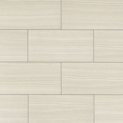 Bedrosians Matrix 12 x 24 Bright