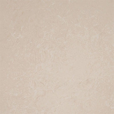 Tilecrest Polished Porcelain 24 x 24 Almond TCR PPOAL60