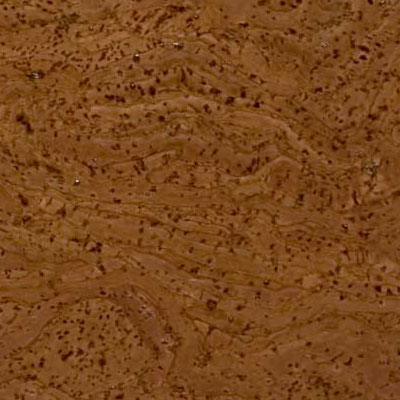 Duro Design Barriga Cork Tiles 12 x 12 Dark Oak