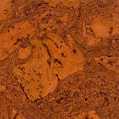 Duro Design Cleopatra Negra Cork Tiles 12 x 12 Orange
