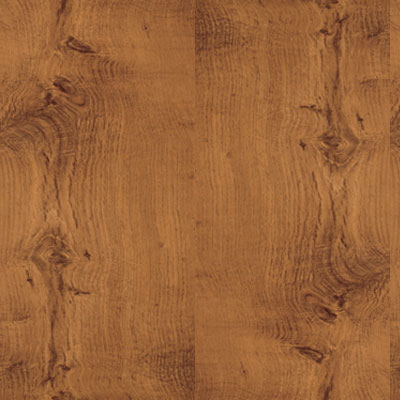 flooring by FERMA's laminate flooring reflects today's most