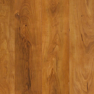 Shaw Floors Natural Values Ii Plus Summerville Pine
