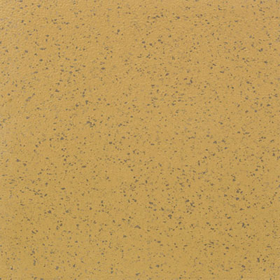 Mannington ColorSpec 18 x 18 Sculptured Sundew 868SC8