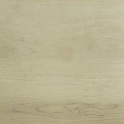 Amtico Spacia Wood 7.25 x 48 White Maple SS5W2654