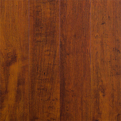 Amtico Spacia Woods 4x36 Antique Oak SS5W2507