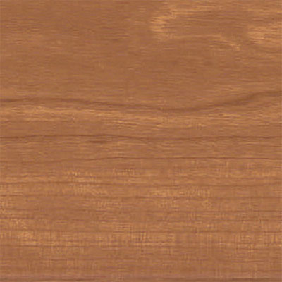 Amtico Spacia Woods 4x36 Warm Cherry SS5W2506