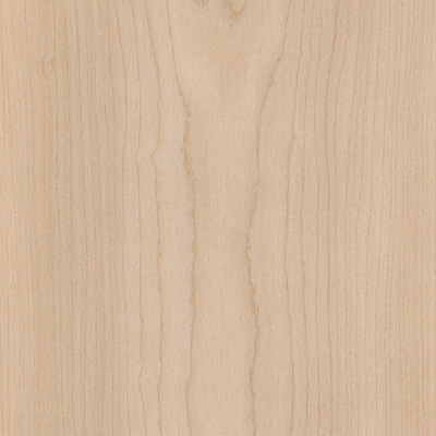 Amtico Wood 6 x 36 Sugar Maple AR0W8020