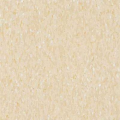 Armstrong Commercial Tile - Imperial Texture Desert Beige 51809