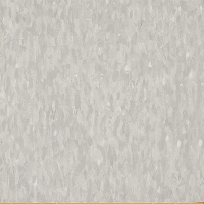 Armstrong Commercial Tile - Migrations (Bio Based Tile) Ashen Gray T3503