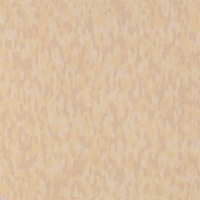 Armstrong Commercial Tile - Static Dissipative Tile (SDT) Sandstone Beige 51954