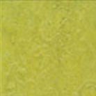 Forbo Marmoleum Modular 10x10 Chartreuse t3224