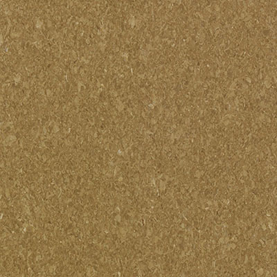 Mannington Progressions Bronze 55246