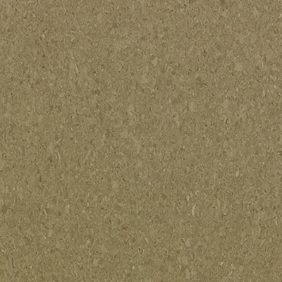 Mannington Progressions Otter Brown 55173