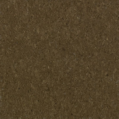 Mannington Progressions Toffee 55219
