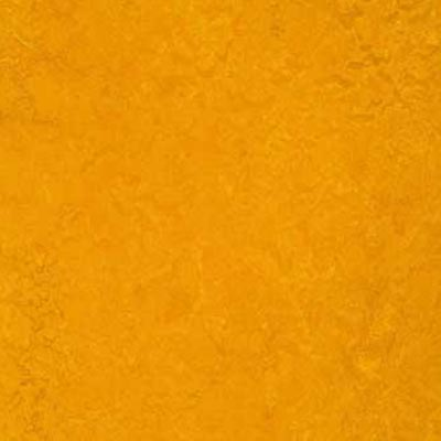 Forbo Marmoleum Decibel Golden Sunset