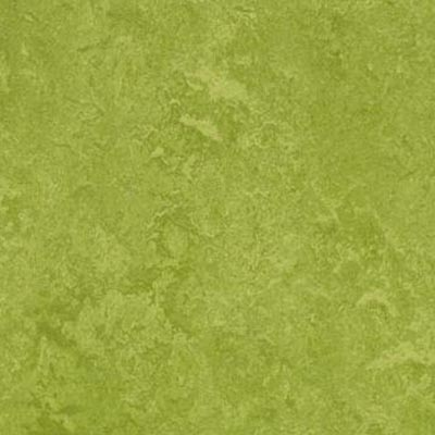 Forbo Marmoleum Decibel Green