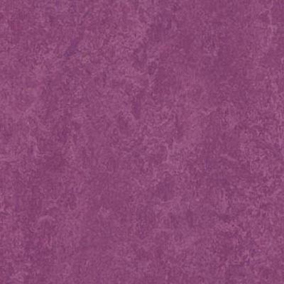 Forbo Marmoleum Decibel Summer Pudding