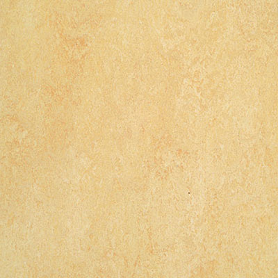 Forbo Marmoleum Dual (Phased Out) Butter 795
