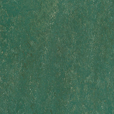 Forbo Marmoleum Dual (Phased Out) Evergreen 475