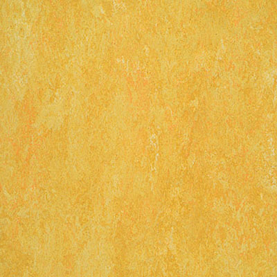Forbo Marmoleum Dual (Phased Out) Lemon 975