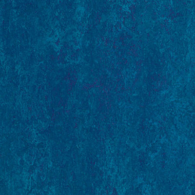 Forbo Marmoleum Dual (Phased Out) Royal Blue 846