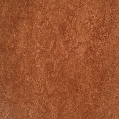Forbo Marmoleum Dual (Phased Out) Rust 767