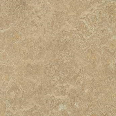 Forbo G3 Marmoleum Dual Tile 20 x 20 Forest Ground t3234