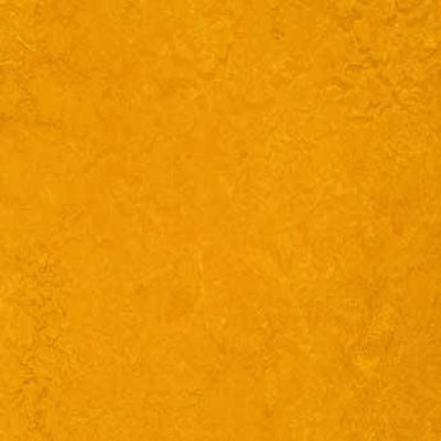 Forbo G3 Marmoleum Dual Tile 20 x 20 Golden Sunset t3125